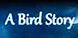 A Bird Story cd key best prices