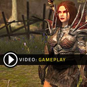 Divinity Original Sin Gameplay Video