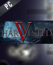 Harvested