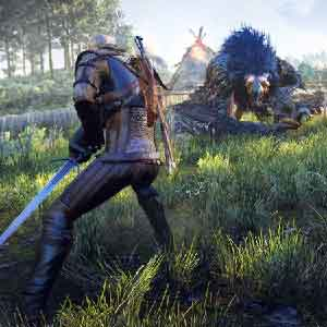 The Witcher 3 Wild Hunt Kill