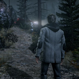 Alan wake Forest