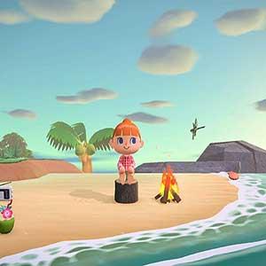 Animal Crossing New Horizons Nintendo Switch Beach