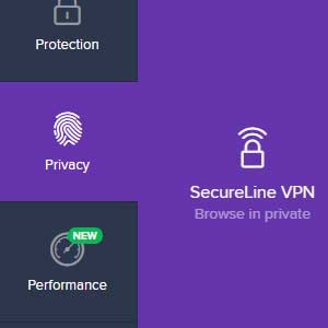 Avast Internet Security Global License - Privacy
