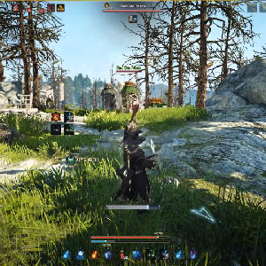 Black Desert Online Forests