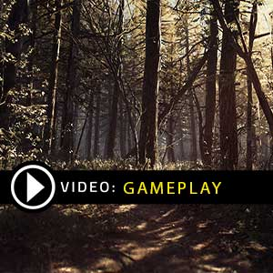 Blair Witch Xbox One Gameplay Video