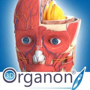 3D Organon Anatomy Digital Download Price Comparison