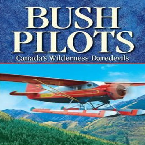 Aviator Bush Pilot Digital Download Price Comparison