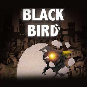 BLACK BIRD Digital Download Price Comparison