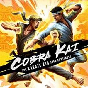 Cobra Kai The Karate Kid Saga Continues Xbox One Digital & Box Price Comparison