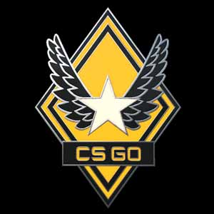 CSGO Series 1 Victory Collectible Pin Digital Download Price Comparison
