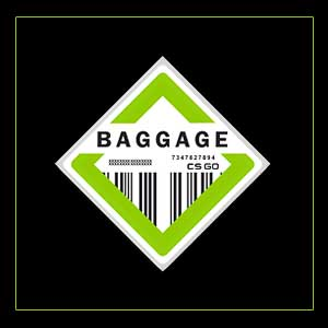 CSGO Series 2 Baggage Collectible Pin Digital Download Price Comparison