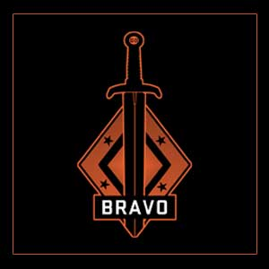 CSGO Series 2 Bravo Collectible Pin Digital Download Price Comparison