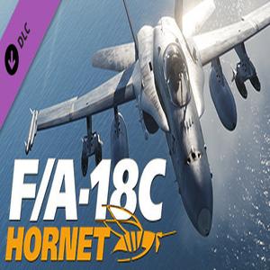 DCS FA-18C Hornet