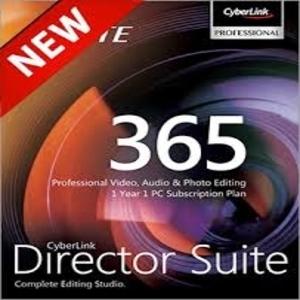 Director Suite 8 365  1 year