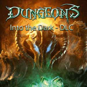 Dungeons Into the Dark Digital Download Price Comparison