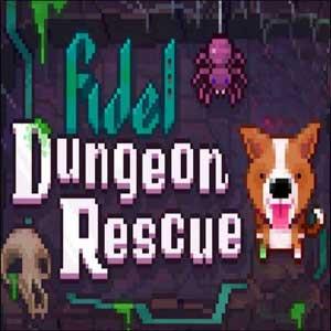 Fidel Dungeon Rescue Digital Download Price Comparison