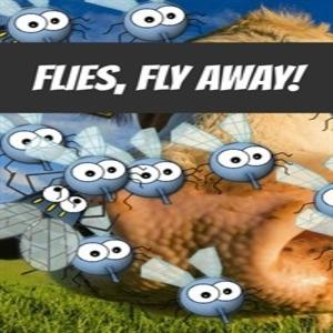Flies fly away
