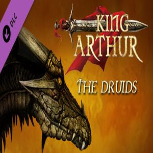 King Arthur The Druids