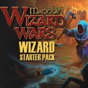 Magicka Wizard Wars Wizard Starter Pack Digital Download Price Comparison