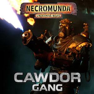 Necromunda Underhive Wars Cawdor Gang