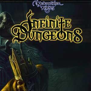 Neverwinter Nights Infinite Dungeons Digital Download Price Comparison