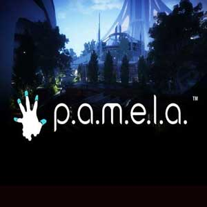 P.A.M.E.L.A. Digital Download Price Comparison