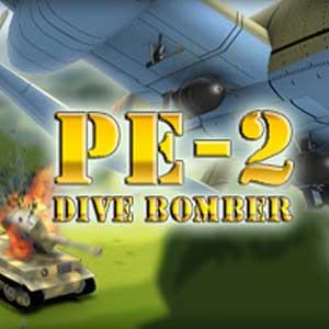 Pe-2 Dive Bomber