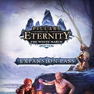 Pillars of Eternity The White March Expansion Pass Digital Download Price Comparison