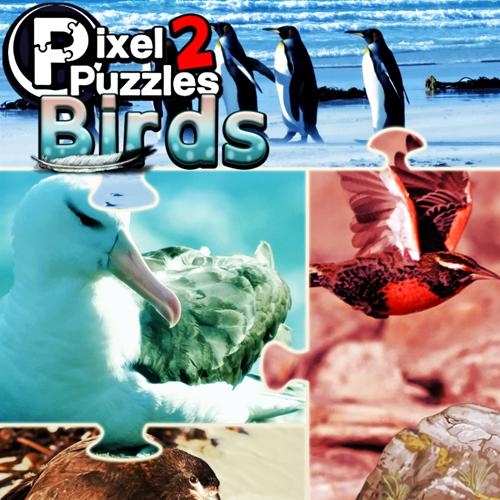 Pixel Puzzles 2 Birds Digital Download Price Comparison