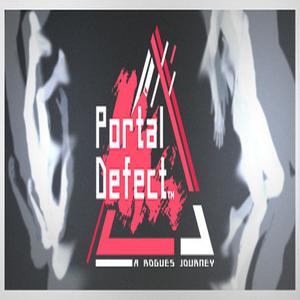 Portal Defect