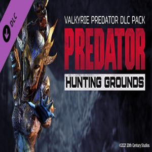Predator Hunting Grounds Valkyrie Predator