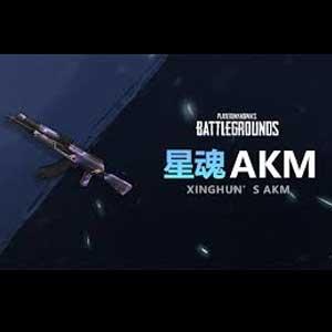 PUBG XingHun's AKM