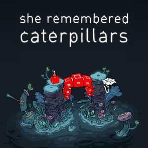 She Remembered Caterpillars Digital Download Price Comparison