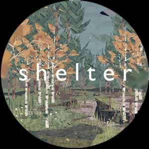 Shelter Digital Download Price Comparison