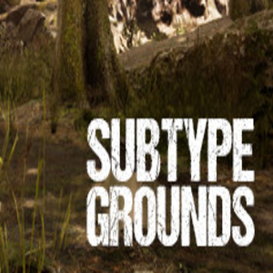 Subtype Grounds