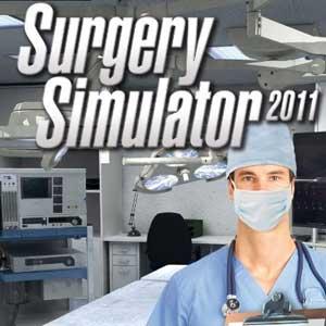Surgery Simulator 2011