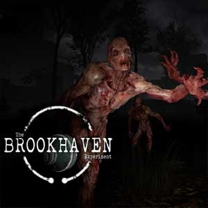 The Brookhaven Experiment Digital Download Price Comparison