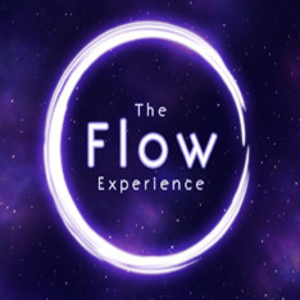 The Flow Experience