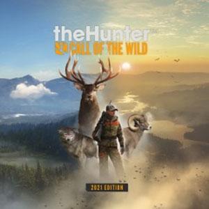 Wild 2021 Stream