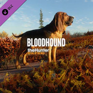 theHunter Call of the Wild Bloodhound Digital Download Price Comparison