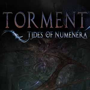 Torment Tides Of Numenera PS4 Code Price Comparison