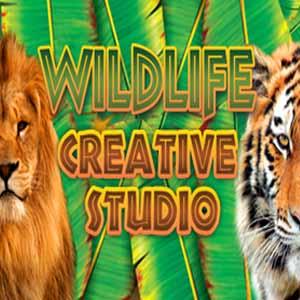 Wildlife Creative Studio Digital Download Price Comparison