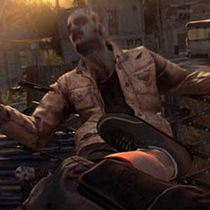 Dying Light - Kick