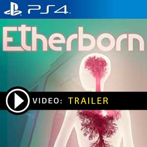 Etherborn PS4 Prices Digital or Box Edition