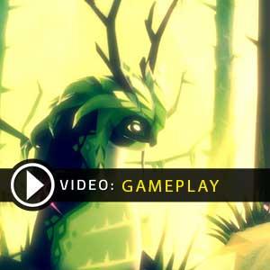 Fe Gameplay Video