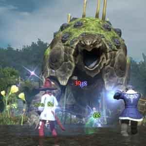 Final Fantasy 14 A Realm Reborn - Fight
