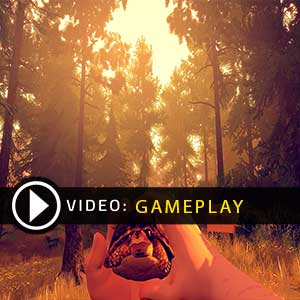 FireWatch PS4 Gameplay Video