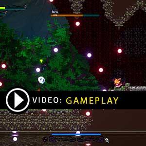 Gensokyo Night Festival Gameplay Video