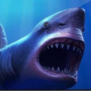 GTA Online Megalodon Shark Cash Card 8 million GTA dollars