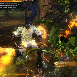 Guild Wars - 2 Fighting Monsters